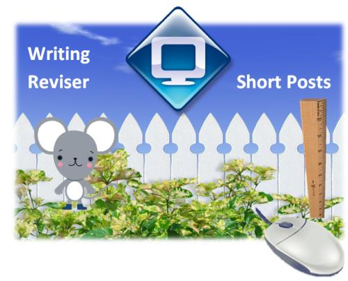 sp_writing_reviser